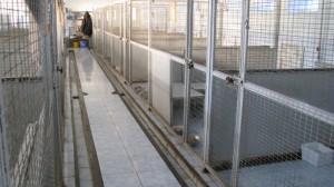 Материалы для пола в вольере: бетон, асфальт, кафель -холодные (однако территорию вокруг можно облагородить этими материалами).  В вольере полагается сделать деревянный настил на высоте