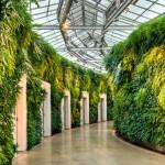Зеленые стены из растений Longwood Gardens
